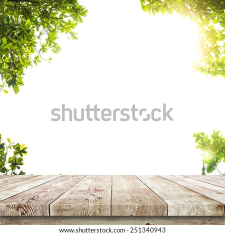 Fresh spring green leaves with wood table over white. Natural background - stock photo