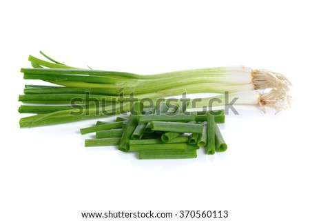 fresh spring onions isolated on a white background - stock photo