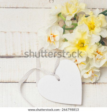 Fresh  spring tender  narcissus flowers and decorative  heart  on white painted wooden background. Selective focus. Place for text. Toned image. - stock photo