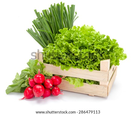 Fresh spring vegetables in wooden crate: radish, scallion and lettuce - stock photo
