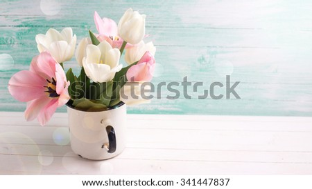 Fresh  spring white and pink  tulips and narcissus in mug in ray of light  on white painted wooden background against turquoise wall. Selective focus. Place for text.  - stock photo