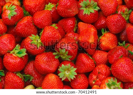 Fresh strawberries. - stock photo