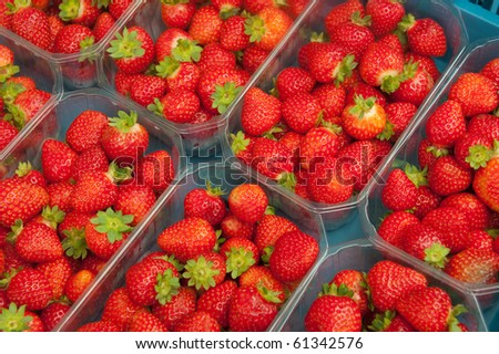 Fresh strawberries for sale in plastic containers - stock photo