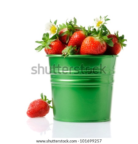 Fresh strawberries in bucket isolated on white background - stock photo