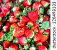 Fresh strawberry - stock photo