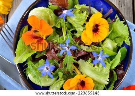 Fresh summer salad with edible flowers nasturtium, borage flowers in a bowl. Top view. - stock photo