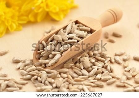 Fresh Sunflower Seeds on wooden background - stock photo