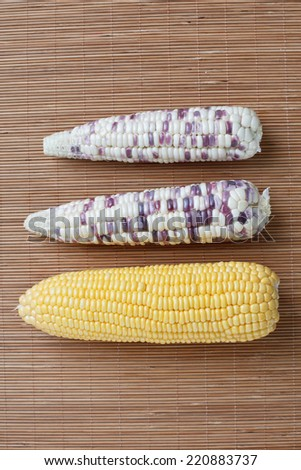 Fresh sweet corn on wooden table - stock photo