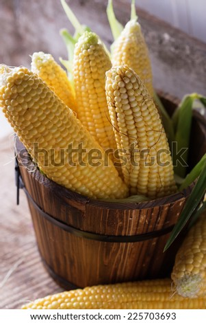 Fresh sweet corn on wooden table. Selective focus. - stock photo