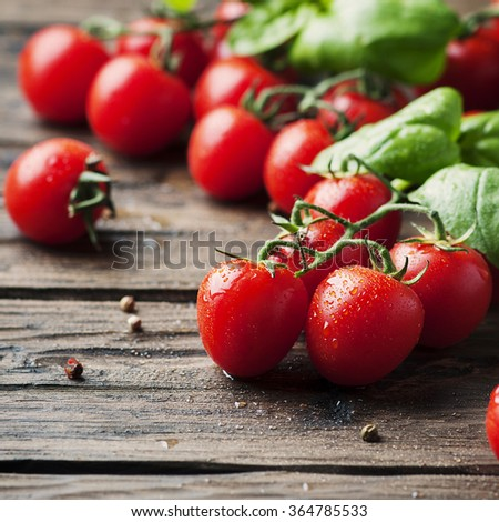 Fresh sweet tomato and green basil on the vintage table, selective focus and square image - stock photo