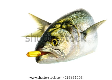Fresh tailor fish with vitamin D on the white background - stock photo