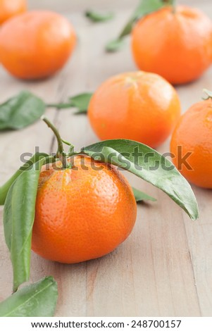 fresh tangerines with leaves - stock photo