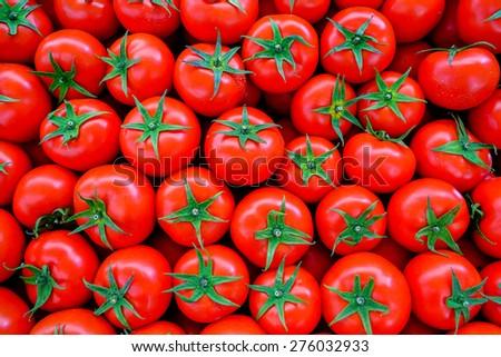 Fresh tomato background - stock photo