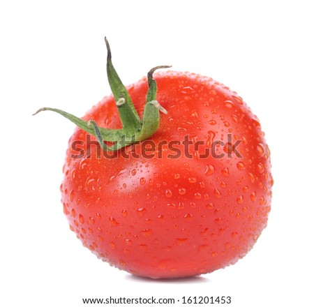 Fresh tomato with water drops. Isolated on a white background. - stock photo