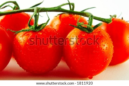 Fresh tomatoes - closeup - stock photo
