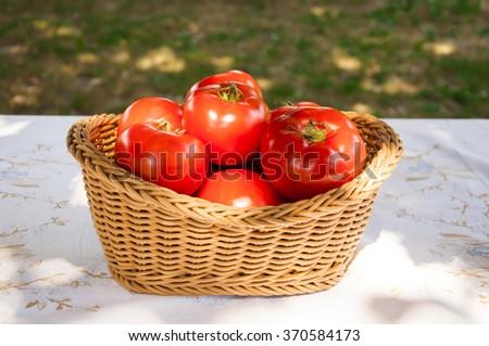 Fresh tomatoes in basket - stock photo