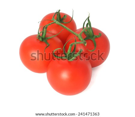 fresh tomatoes on branch isolated on white background - stock photo