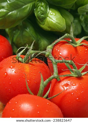 Fresh tomatoes with basil in background - stock photo