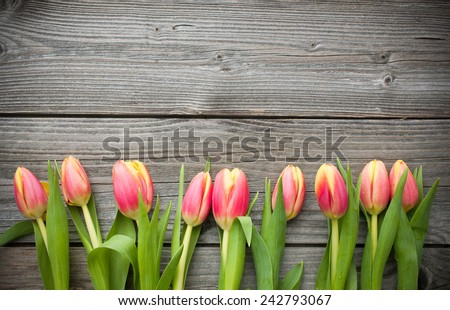 fresh tulips arranged on old wooden background with copy space for your message - stock photo