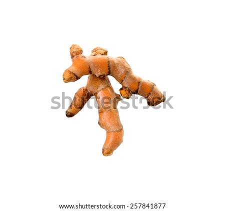 Fresh turmeric isolated on white background - stock photo