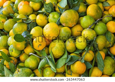 fresh underripe tangerines in a box for sale - stock photo