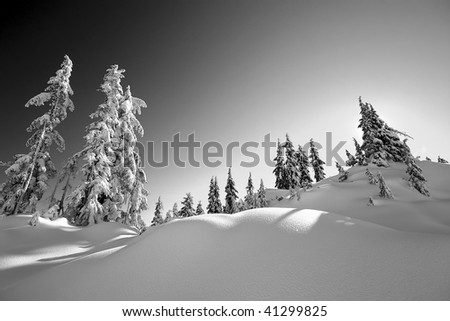 Fresh Vancouver snow scene with filter effect - stock photo