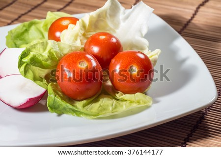 Fresh vegetable dish with tomatoes and radishes on plate - stock photo