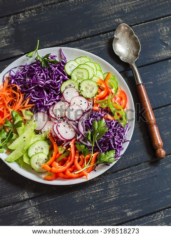 Fresh vegetable salad with red cabbage, cucumber, radish, carrots, sweet peppers, red onion and parsley on a white plate.  On wooden rustic background - stock photo
