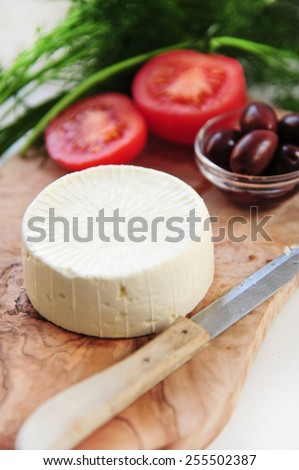 fresh vegetable salad with tomatoes and  olives - stock photo