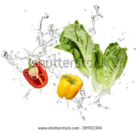 fresh vegetables and water splash on white background - stock photo