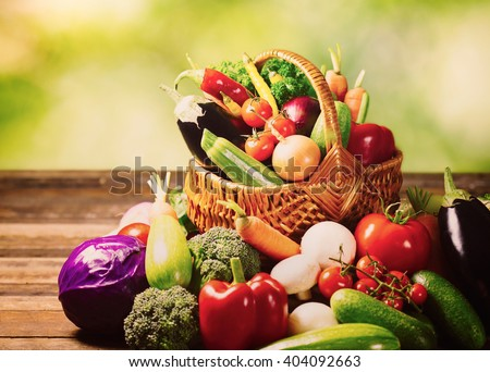 Fresh vegetables in the basket in the garden - stock photo
