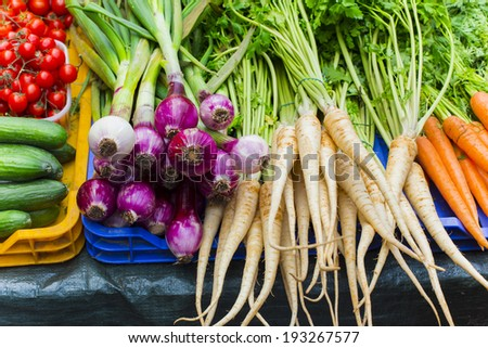 fresh vegetables in the market - stock photo