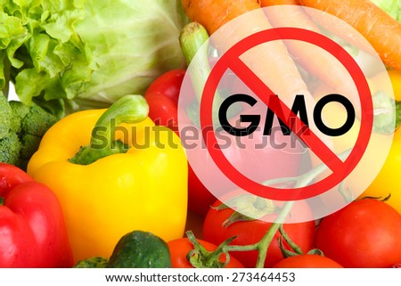 Fresh vegetables without gmo - stock photo