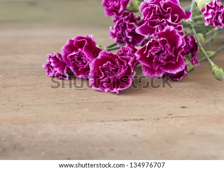 Fresh violet  carnations on wooden background. Selective focus. - stock photo