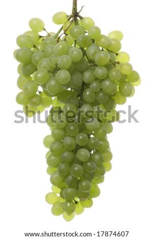 Fresh white grapes isolated on white. - stock photo