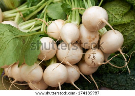 Fresh white turnip vegetables for sale on Provence market of Marseille, South France - stock photo
