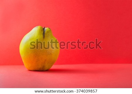 Fresh yellow quince over red background, copy space - stock photo