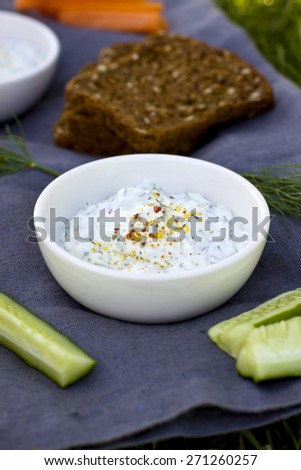 Fresh yogurt dip with herbs and spices - stock photo