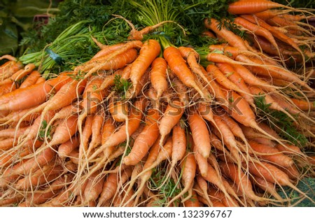 Fresh young carrots at local farmers market. - stock photo