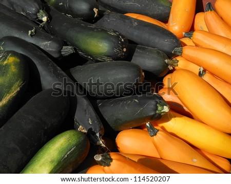 Fresh Zucchini Produce - stock photo