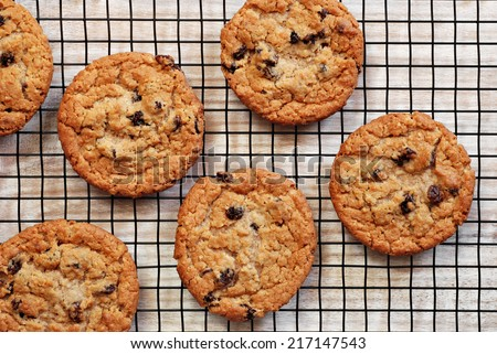 Freshly baked oatmeal raisin cookies on cooling rack over rustic wood background. Closeup from above with natural directional lighting.  - stock photo