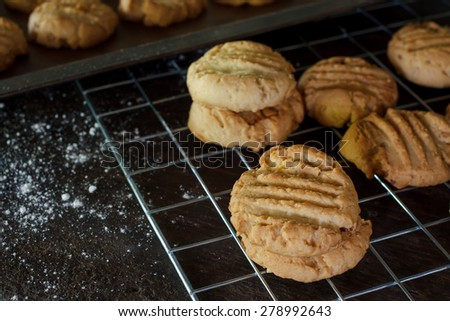 Freshly baked peanut butter cookies on cooling rack. Macro with extremely shallow dof. Selective focus limited to center of closest cookie. - stock photo