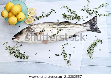 Freshly caught striped bass being prepared for dinner. - stock photo