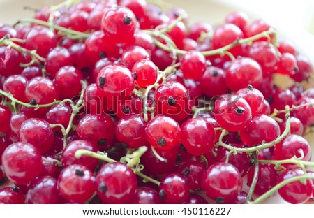 Freshly collected red currant berries. Natural background. Pile of ripe redcurrant berries. - stock photo