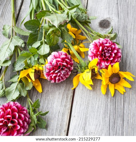 Freshly cut asters and rudbeckia on wooden background. - stock photo