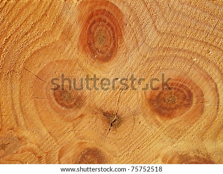 Freshly cut wooden stud at the lumber yard - stock photo