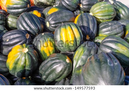 Freshly harvested Acorn Squash on display at the market - stock photo