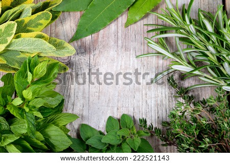 Freshly harvested herbs, herbs frame over wooden background. Copyspace. - stock photo