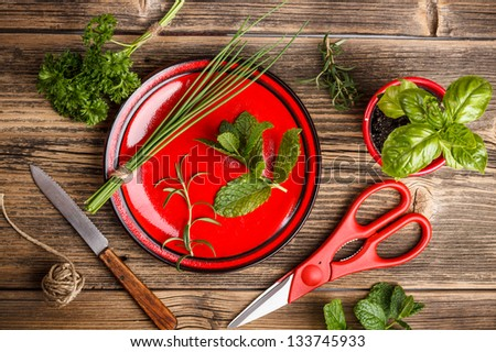 Freshly harvested spices with scissors and knife on wood background - stock photo