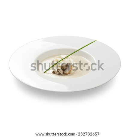 Freshly made mushroom soup, sauce on a plate on a white background - stock photo